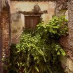"""Caguas Ruins as Art"" by ipsofactophoto"