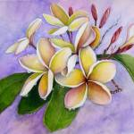 """Plumeria After the Rain At Kipu Kai"" by Art-That-Inspires"