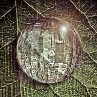 The Matrix Has You ! Art Prints & Posters by Akshay Moon