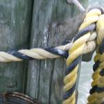 """Dock Knot"" by Leyland"