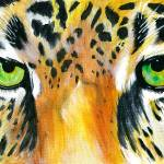 """Jaguar Eyes"" by primalaspects"