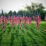 """Field of Honor"" by rsummers"