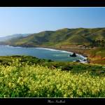 """""""Marin Headlands"""" by the_tahoe_guy"""