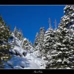 """Alpine Ridge"" by the_tahoe_guy"
