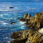 """Point Lobos State Reserve, California"" by the_tahoe_guy"