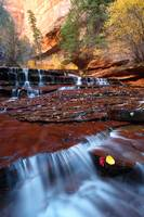 Autumn Zion Waterfall