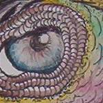 """FishEye Close Up"" by Surreal_Artist"