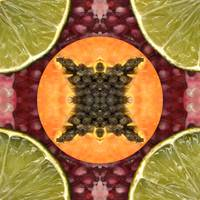 Fruit mandala - papaya