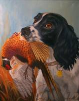 Springer Spanial with Pheasant