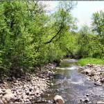 """Nine Mile Creek"" by ShayneHanson"