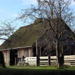 """Old Whidbey Barn"" by gopnw"