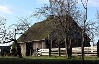 Old Whidbey Barn