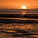 """Sunset"" by heartbringer"