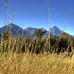 """""""grass and tetons"""" by dasmart1"""