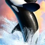 """Orca 1"" by jerrylofaro59"
