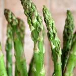 """Asparagus"" by aroundtheisland"