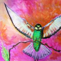 Pink Bee Eater Art Prints & Posters by Adrienne Myles