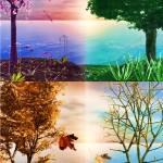 """""""Seasons Changing"""" by BrokenWings3D"""
