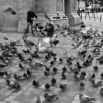 """""""Elle Disperse Les Pigeons #1"""" by patricktpower"""