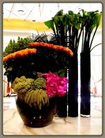 Wynn, Vegas, Reception,