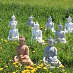 """Meditation Buddhas for Peace"" by MorningStarPhotos"