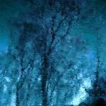 """Moonlight...!!!"" by Woodsman"