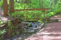 Wooden Bridge Over Mountain Stream