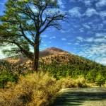 """Sunset Crater (T05457bc)"" by Arizona_Photography"