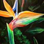 """Bird of Paradise"" by rebeccafoster"