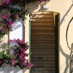 """Bouganvilla Climbing Doorway"" by DonnaCorless"