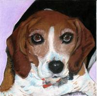 Trixie the Beagle