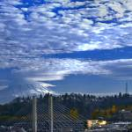 """""""Rainer from Down Town Tacoma"""" by Johnsimages"""