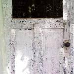 """The Forest Door"" by joeloveimages"