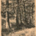 """Charcoal Forest"" by JoBradney"