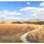 """""""Konza Prairie (1)"""" by Tanasi"""