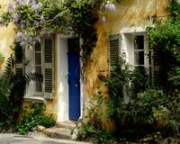 Wisteria over Blue Door