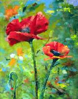 Pair of Poppies