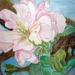 """""""Apple Blossom"""" by lindalou2"""
