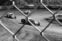 Through the Fence Blk and Wht #2