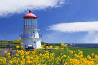 Springtime Lighthouse