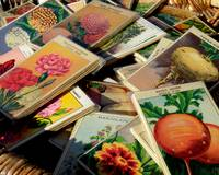 Antique French Seed Packs