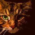 """""""Maine Coon Cat in Shadows"""" by bztat"""