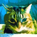 """Tiger Striped Cat"" by bztat"