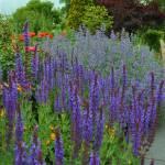 """""""Gardens"""" by gailcorrow"""