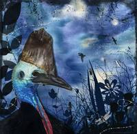 Midnight Cassowary and Fireflies