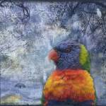 """Rainbow Lorikeet and Egrets"" by naturespaintbox"