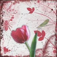 Red Tulip and Dragonfly