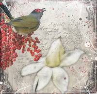Winter's Fig Bird
