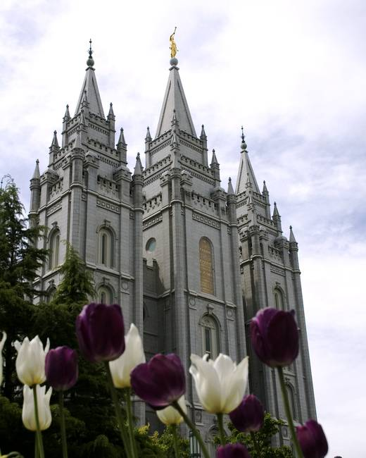 "Salt Lake City Spring: Stunning ""Salt Lake Temple"" Artwork For Sale On Fine Art"