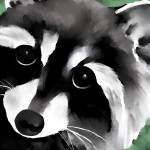 """Raccoon"" by waterart"